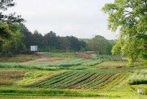 serenbe_farms